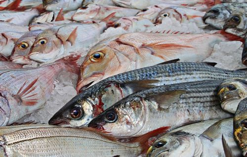a photo of fish in a market